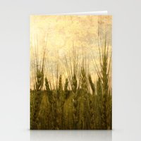 Light in the Grasses Stationery Cards