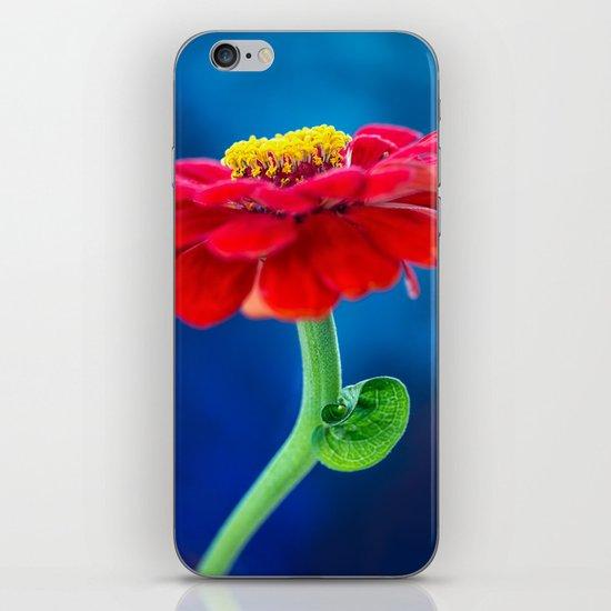 COLOR BLOCKING | RGB iPhone & iPod Skin