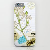iPhone & iPod Case featuring Western White Clematis by Alissa Thiele