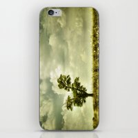 Summer Moodiness iPhone & iPod Skin