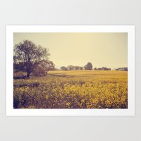 Vintage Field  Art Print