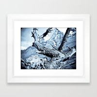 Nature dry. Framed Art Print