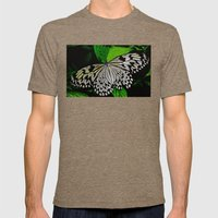 LACE -WINGED Mens Fitted Tee Tri-Coffee SMALL