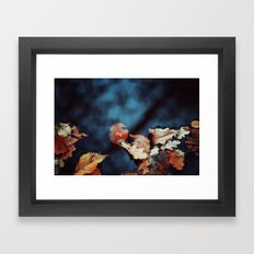 Leaves and Water Framed Art Print