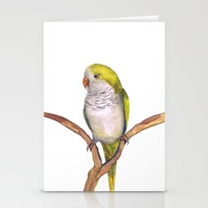 Quaker parrot in watercolor Stationery Cards