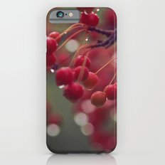 candied iPhone 6 Slim Case