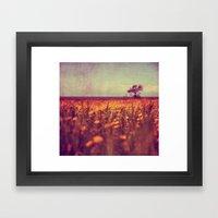 Lying In A Field Of Dais… Framed Art Print