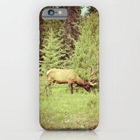 Time to Graze iPhone 6 Slim Case