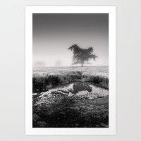 Tree In Marshland - Blac… Art Print