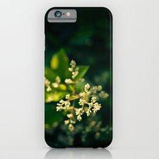 Foliage Slim Case iPhone 6s
