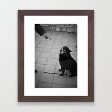 Undisciplined Dog Framed Art Print