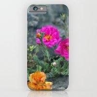 Rock Rose iPhone 6 Slim Case