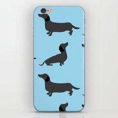 Dachshund pattern iPhone & iPod Skin