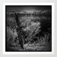 Black river Art Print