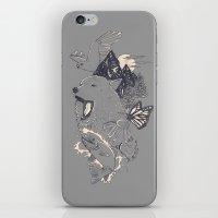 Northern Americana  iPhone & iPod Skin