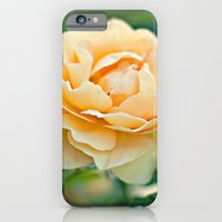 Little Rose iPhone 6 Slim Case