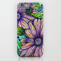 Purple Daisies iPhone 6 Slim Case