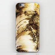The Beautiful Birch iPhone & iPod Skin