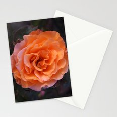 Holland Park Rose Stationery Cards