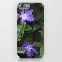 iPhone & iPod Case featuring Perriwinkle by Steve Watson