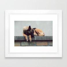 Take A Nap Framed Art Print