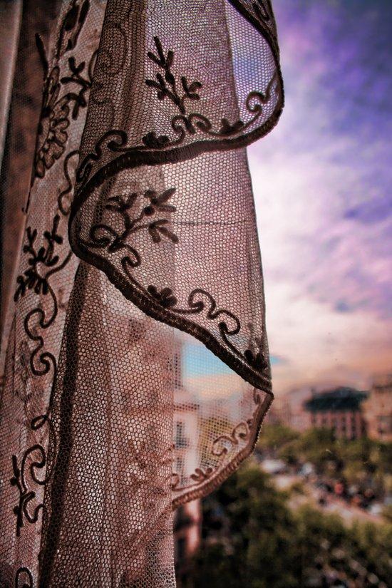 Gaudi's Window Art Print