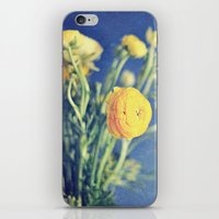 Ranunculus (on Blue) iPhone & iPod Skin