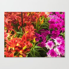 Red War Vs Purple War Canvas Print