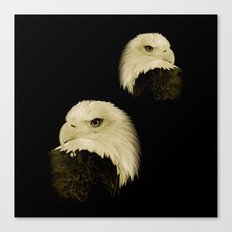 American Eagles Canvas Print