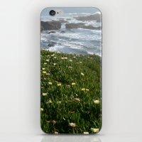 Luz iPhone & iPod Skin