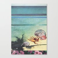 Sea Collections Canvas Print