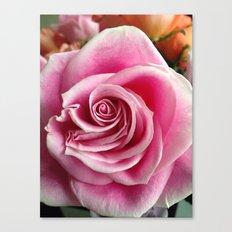Pink Bloom Canvas Print