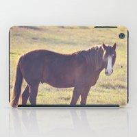 Chesnut Horse iPad Case