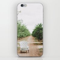 Chair in the Orchard iPhone & iPod Skin