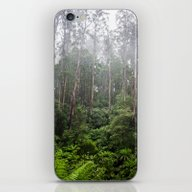 Forest And Fog iPhone & iPod Skin