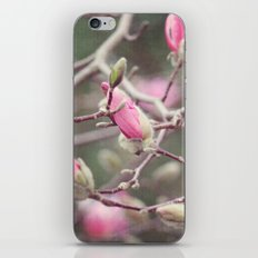 Awakenings iPhone & iPod Skin
