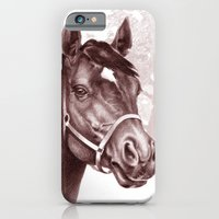 Stare of The Stallion iPhone 6 Slim Case