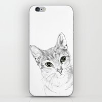 A Sketch :: Cat Eyes iPhone & iPod Skin