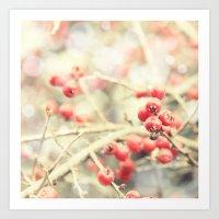 Beautiful Red Berries In… Art Print