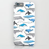 Whale Constellation iPhone 6 Slim Case
