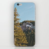 Trees in the Mountains iPhone & iPod Skin