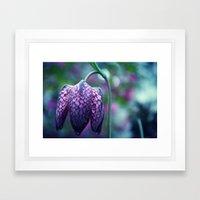 Spring Flower 08 Framed Art Print