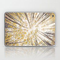 fall looking up Laptop & iPad Skin