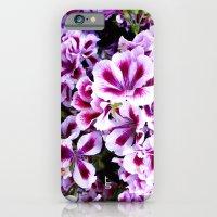Martha Washington Geranium I iPhone 6 Slim Case