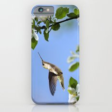 Spring Hummingbird iPhone 6 Slim Case
