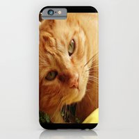 iPhone & iPod Case featuring Chester by Libby B