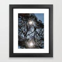 Arterial California TREES Framed Art Print