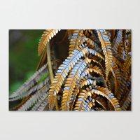 Fragile Ferns Canvas Print