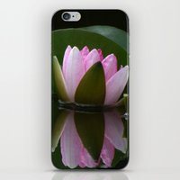 Reflecting Water Lily iPhone & iPod Skin