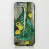 iPhone & iPod Case featuring Collard Greens by Olivia Joy StClaire